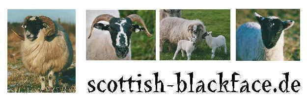 scottish-blackface.de